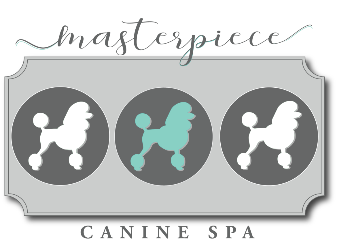 masterpiece_canine_spa_banner.png